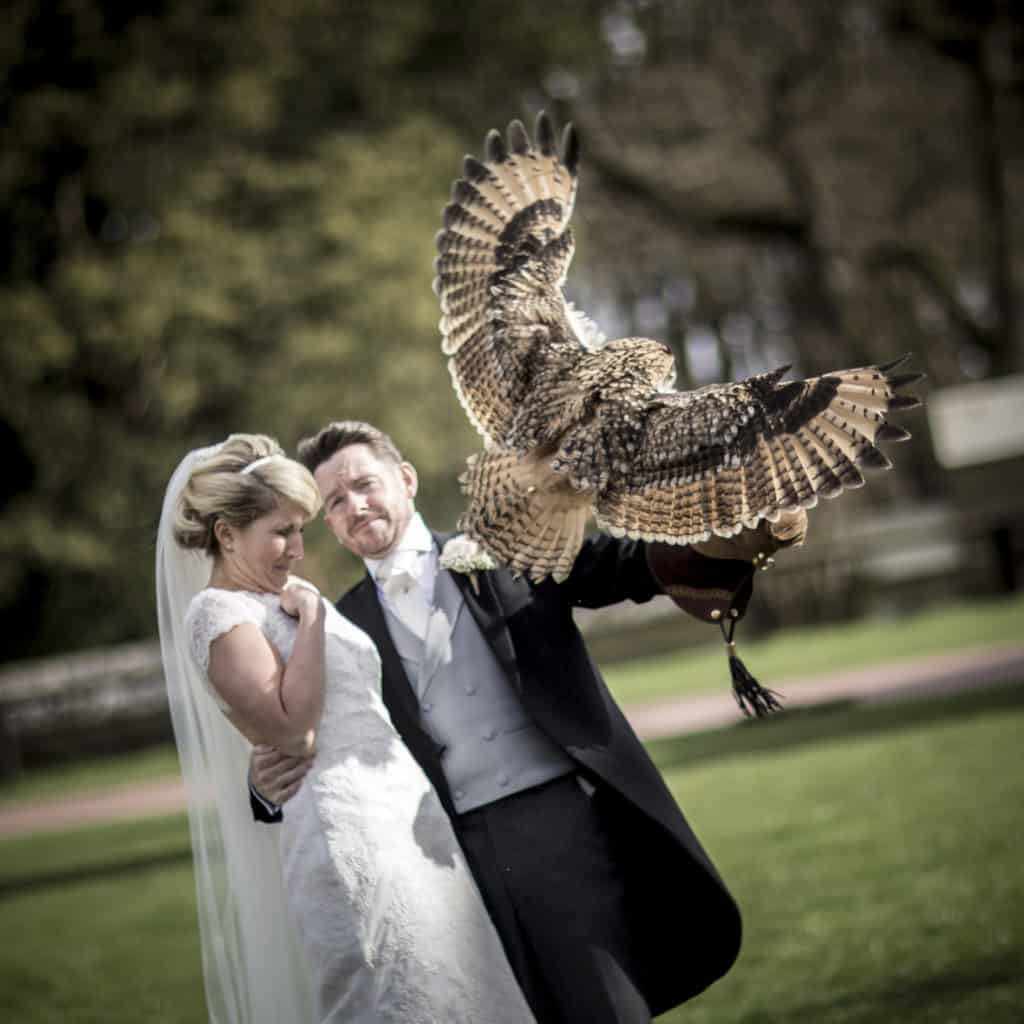 Bride and groom holding an owl at there wedding in Peckforton Castle in Cheshire